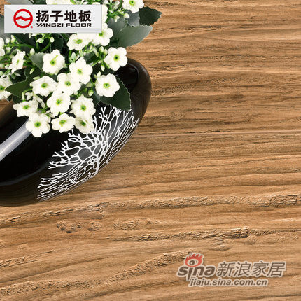 扬子地板 强化复合木地板