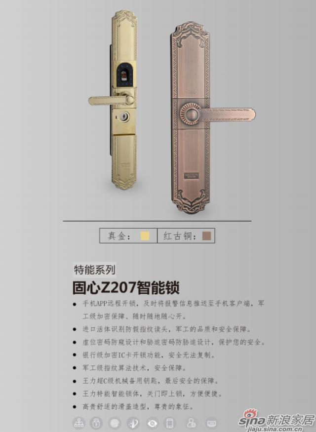 王力智能锁-特能系列