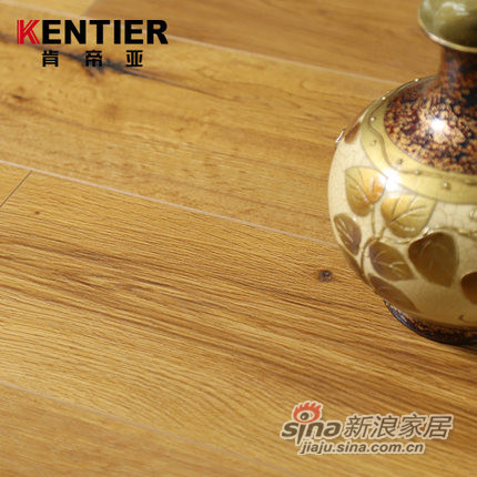 肯帝亚强化复合木地板特价-1