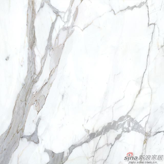诺贝尔大板瓷抛砖鱼肚白-1