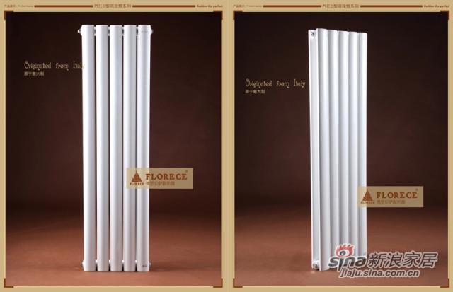 佛罗伦萨 乔托(Giotto)钢制暖气片家用散热器暖气高端集中采暖