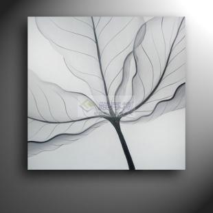 手绘蝴蝶黑白装饰画图片大全 黑白装饰画习作