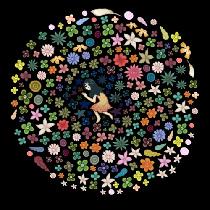 【暖访谈】黑荔枝的异想世界