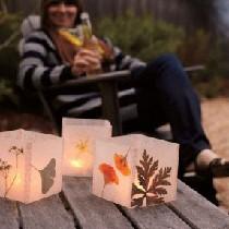 温柔的晚风,轻轻吹过,好久很久没有这样温暖过了。手旁的烛光被小植物包围,洒下的微光也是深深浅浅。这样一款自然的植物灯罩很适合这样的夜晚吧,不如就借着植物的光芒写一封信,说说你的惦记。