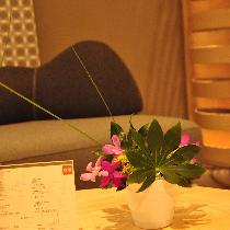 【趣味生活公开课】池坊插花体验5