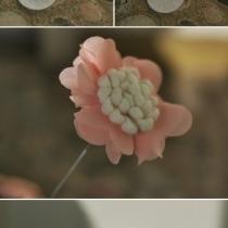 DIY超仙的手捧花