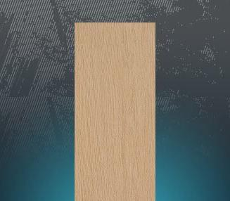 �9��y.l�.�9b(:fi_l&d原生木lsh9102fi030墙砖